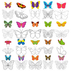 set of butterfly coloring book