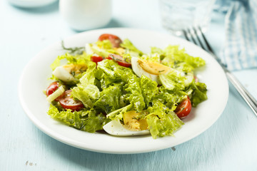 Fresh green salad with tomatoes and hard boiled egg