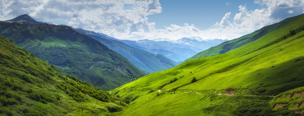 Photo sur Aluminium Montagne Vibrant mountain landscape. Green meadows on the high hills in Georgia, Svaneti region. Panoramic view on grassy highlands on sunny summer day. Caucasus mountains. Idyllic nature. Alpine valley