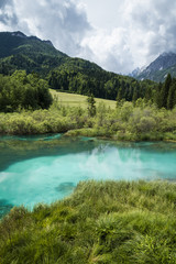 scenic destination zelenci - river dolinka source in summertime, slovenia