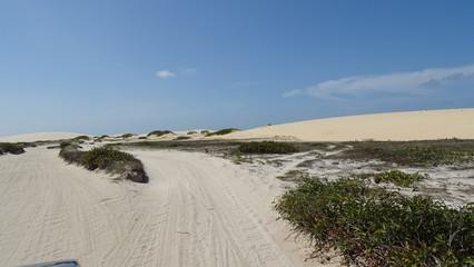 dunes beach and sea