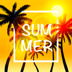 Palms summer cover frame banner, art design signboard . Vector illustration
