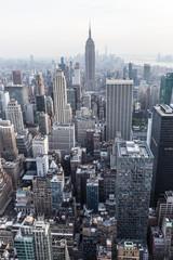 Wall Mural - Manhattan downtown skyline panorama, New York City, USA.