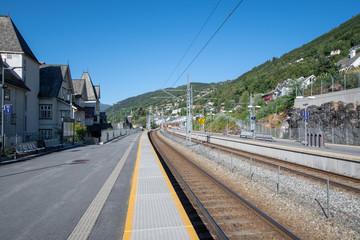 北欧 ノルウェー ベルゲン鉄道 ベルゲン ヴォス駅 夏 Northern Europe Norway Bergen railway summer Voss staition