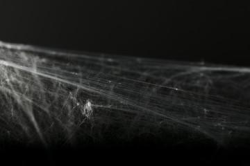 Halloween creepy cobweb spiders web with a black background