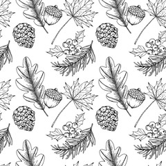Christmas pattern seamless background. with pine corn, maple leaf, holly, berries, oak, illustration.