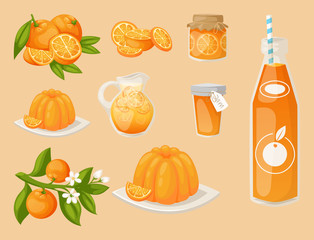 Oranges and orange products vector illustration natural citrus fruit vector juicy tropical dessert beauty organic juice healthy food.