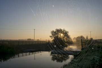 Spider Web on a Misty Morning with Sunrise Over The River Dearne