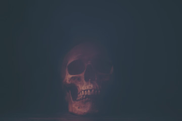 picture of Halloween concept, vintage filter image