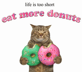 The cat holds two bitten donuts. Life is too short. Eat more donuts. White background.