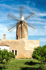 Old Grain Mill  |  Mallorca  |  9335