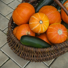 Pumpkin and zucchini in wicker basket. Harvest concept