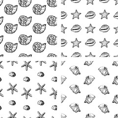 Set of backgrounds with different seashells