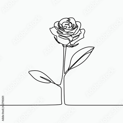 One Line Drawing Of A Rose Flower Minimal Modern And Simple Design