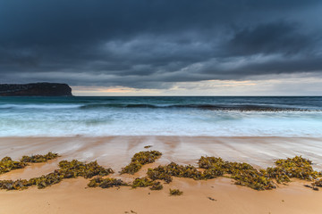 Sunrise, Seaweed and a Stormy Sky