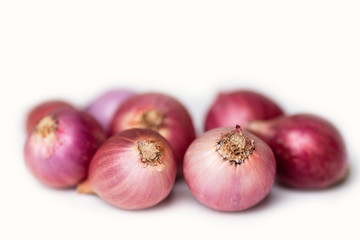 Red shallot onion on white, herb and spice, food ingredient