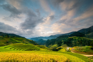Poster Hill Mu Cang Chai terraces rice fields in harvest season