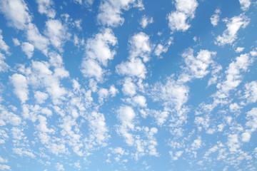 雲 青空 うろこ雲
