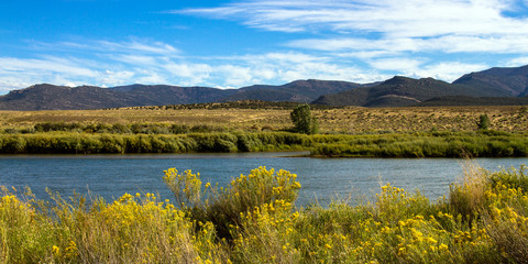 The Green River passes autumn grasses, yellow-flowering Chamisa, wetlands, and mountains in Browns Park National Wildlife Refuge in northwestern Colorado