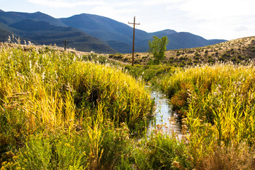 On an autumn evening, a creek or stream passes wetland grasses, acres of sagebrush prairie tree, and mountains in Browns Park National Wildlife Refuge in northwestern Colorado