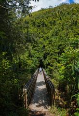 Woman hiking across footbridge