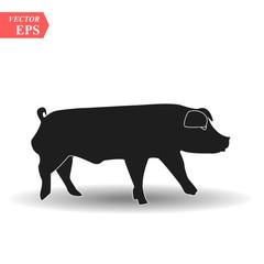 Pig icon. Pork icon. Pig vector illustration