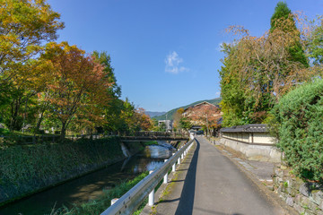 The road to Kinrin Lake with Mount Yufu in Background and blue sky with clouds in autumn. onsen town, Yufuin, Oita, Kyushu, Japan