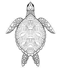 Contour black and white illustration of turtle. The object is separate from the background. Linear illustration for printing on T-shirts, covers, sketches of tattoos and your design.