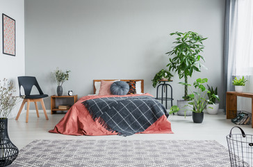 Patterned blanket on red bed in grey bedroom interior with wooden armchair and plants. Real photo