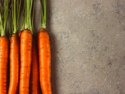 Raw whole fresh carrots on gray background.