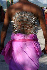 Tamil man wearing small spears pierced through skin on bare back, Cavadee celebration, Muruga devotee