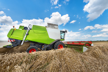 Wall Mural - Harvester machine to harvest wheat field working.