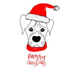 Hand drawn monochrome vector illustration with a cute dog celebrating a Merry Christmas - isolated on white background for print cards and web banner