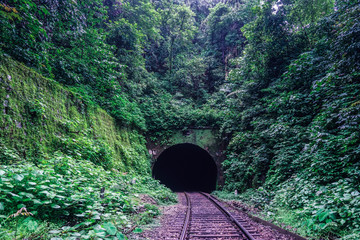 Railway tunnel in the Indian jungle