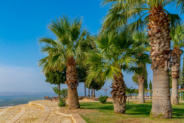 The characteristic summer nature of one of the subtropical Mediterranean countries. Photos from places of summer recreation and travel.