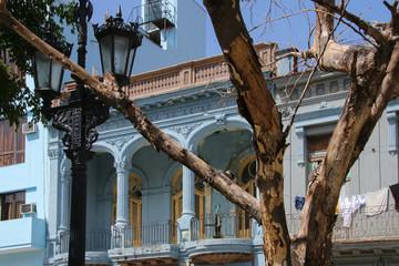 Havana, Architecture, Paseo de Marti, Tree, Street Lamp