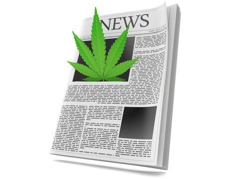 Cannabis leaf inside newspaper