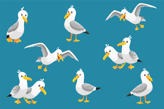 Vector set of cute seagulls isolated on blue background. Vector illustration.