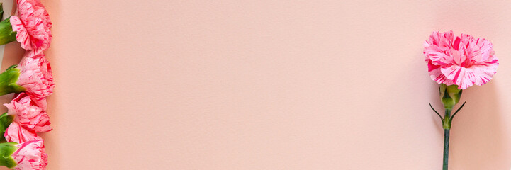 Panoramic photo with pink carnations on a pink pastel copy space background from handmade paper