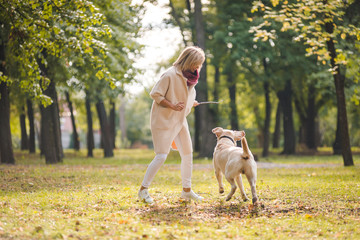 .A young woman plays with her dog Labrador in the park in the fall. Throws a stick to the dog.