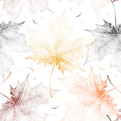 Seamless vintage pattern with color maple leaves on white background.