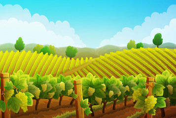 Rural landscape of vineyard. Vines with white grapes stretching over the hills with trees and mountains in background. Summer season. Vector illustration.