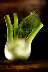 green fennel as side dish on a wooden wood table in light painting
