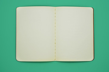 Open Blank Page notebook and green background