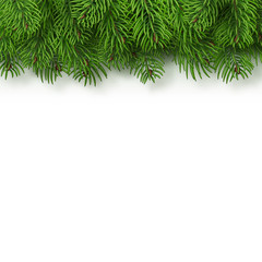 Christmas tree branches background. Christmas and New Year decor. Realistic vector illustration isolated on a transparent background