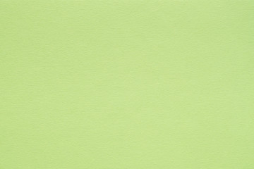 bright green paper texture background. colored cardboard fibers and grain. empty space concept. Wall mural