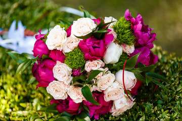 Awesome bouquet of fresh red and white roses on green background