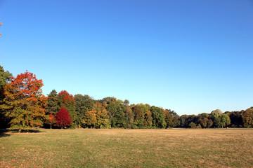 Autumn landscape 5