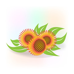 Sunflowers icon logo greetings card vector