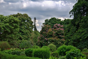 BEAUTIFUL VIEW IN LALBAGH